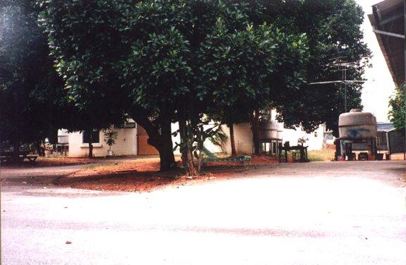 tripod-63.jpg